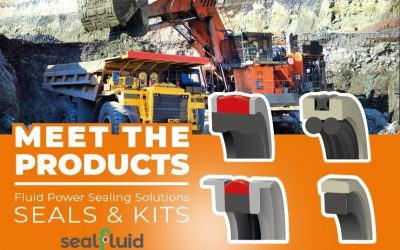 Hydraulic Seals and Kits